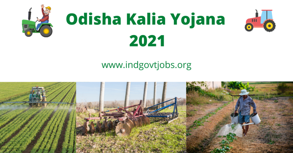 Odisha Kalia Yojana 2021